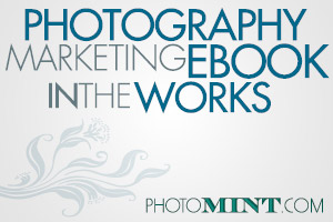Photography Marketing: Ebook in the Works